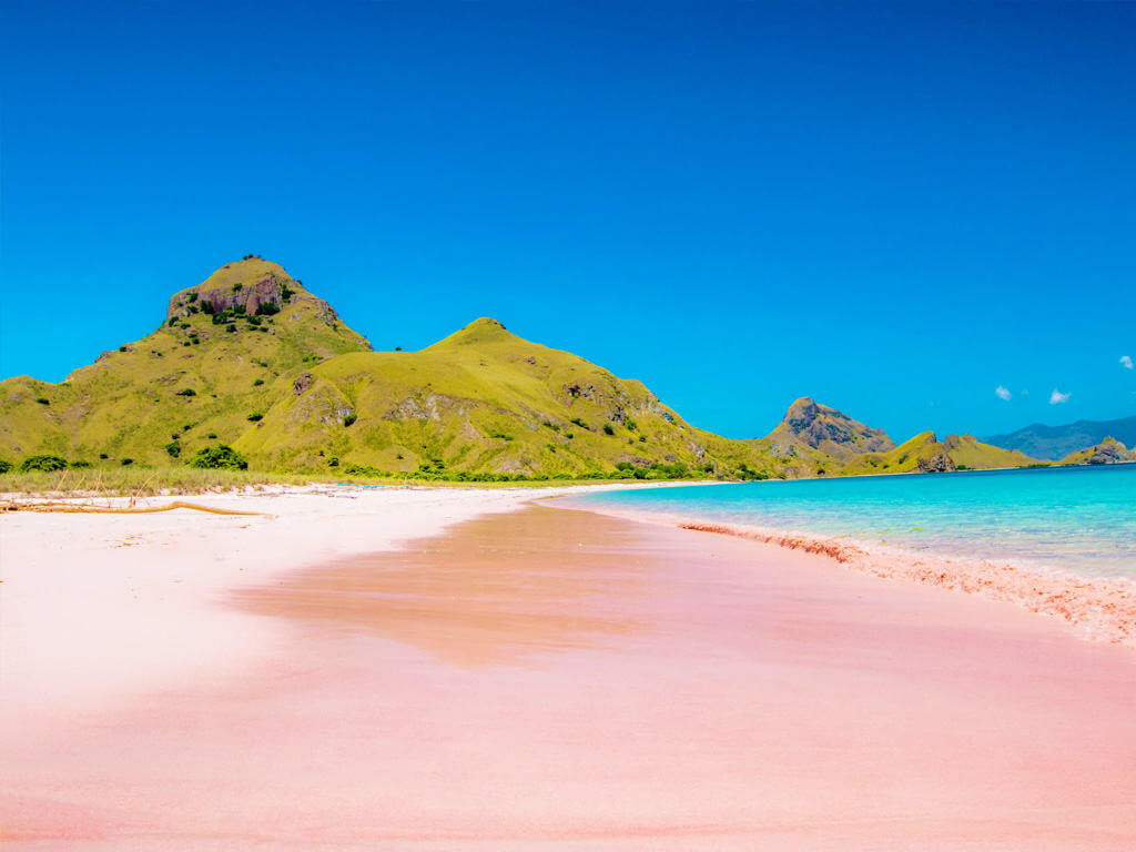 Pink beach Komodo Islands Flores