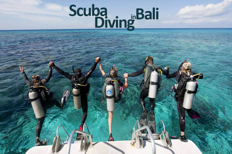 sudamala_diving